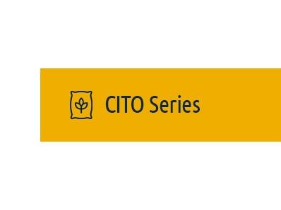 CITO Series