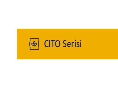 CITO Serisi