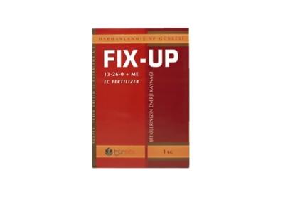 FIX - UP