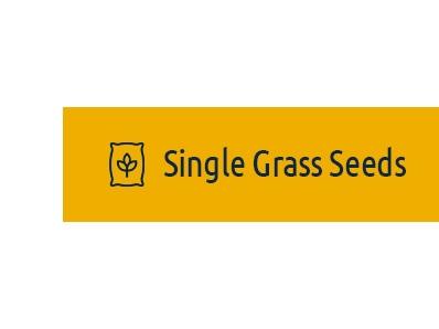 Single Grass Seeds