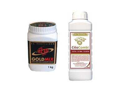 Gold Mix-Cito Combi