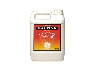 Sachak