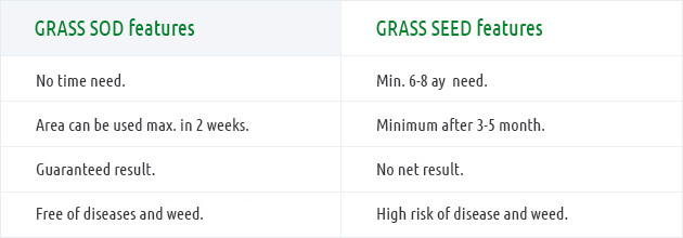 What is the difference between the grass seed application on lawns and grass sod application?
